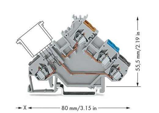 Initiatorenklemme 5 mm Zugfeder Belegung: L Grau WAGO 280-561 50 St.