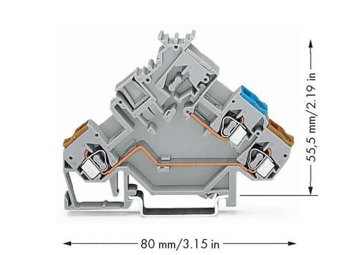 Aktorenklemme 5 mm Zugfeder Belegung: L Grau WAGO 280-562 50 St.