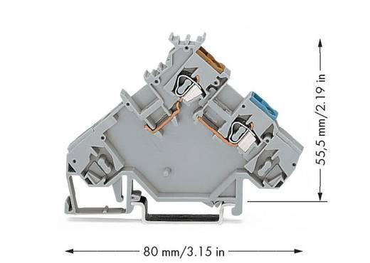 Initiatorenklemme 5 mm Zugfeder Belegung: L Grau WAGO 280-564 10 St.