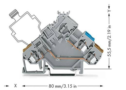 Aktorenklemme 5 mm Zugfeder Belegung: L Grau WAGO 280-565 50 St.