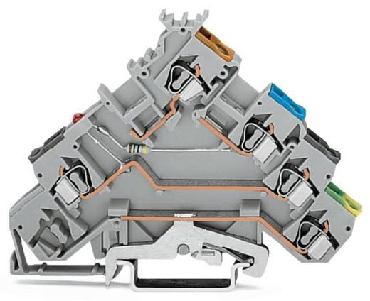 Initiatorenklemme 5 mm Zugfeder Belegung: L Grau WAGO 280-570/281-434 50 St.
