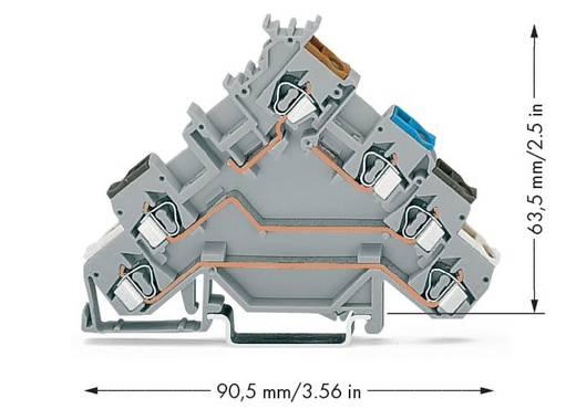Initiatorenklemme 5 mm Zugfeder Belegung: L Grau WAGO 280-580 50 St.