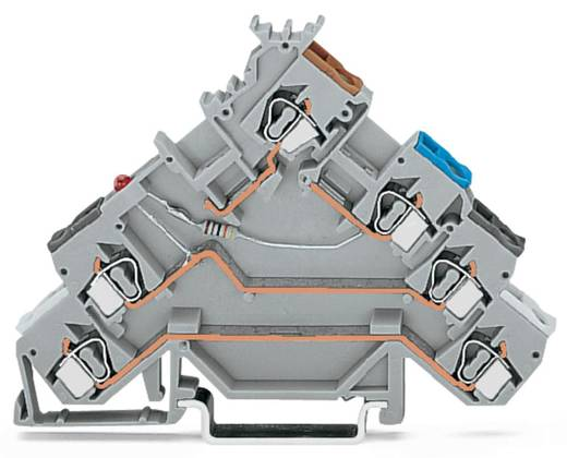 Initiatorenklemme 5 mm Zugfeder Belegung: L Grau WAGO 280-580/281-434 50 St.