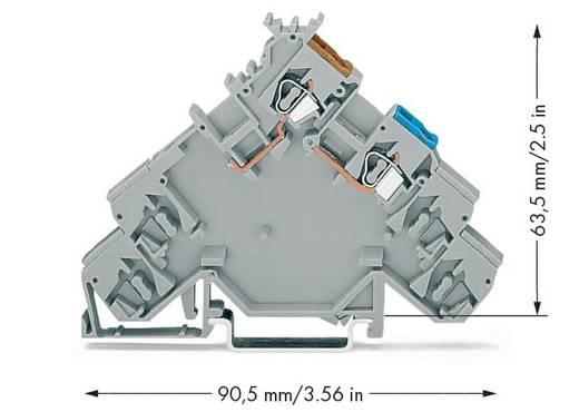 Initiatorenklemme 5 mm Zugfeder Belegung: L Grau WAGO 280-584 10 St.