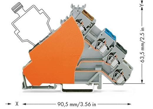 Initiatorenklemme 6 mm Zugfeder Belegung: L Grau WAGO 280-588/280-323 50 St.