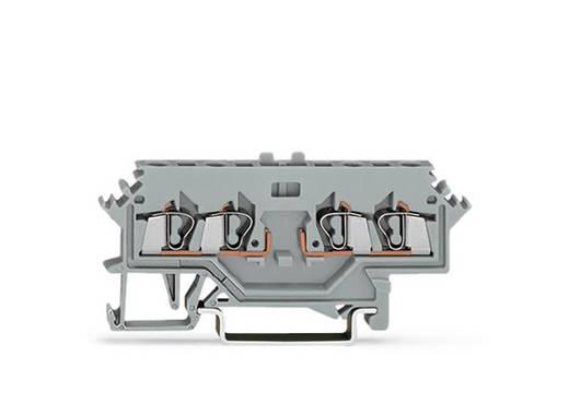 Basisklemme 5 mm Zugfeder Belegung: L Grau WAGO 280-606 100 St.