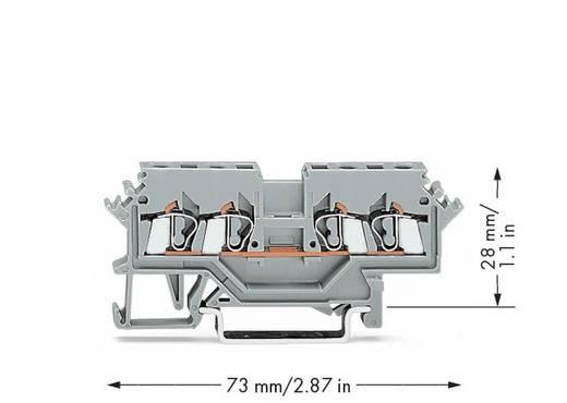 Durchgangsklemme 5 mm Zugfeder Belegung: L Grau WAGO 280-621 100 St.