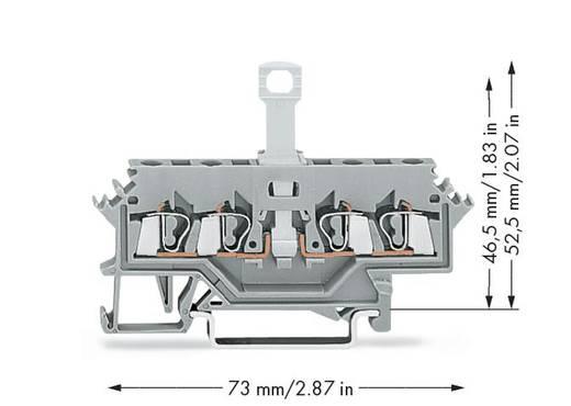 WAGO 280-622 Trennklemme 5 mm Zugfeder Belegung: L Grau 50 St.