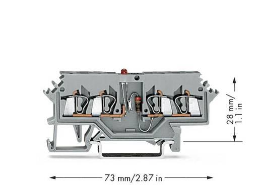 LED-Klemme 5 mm Zugfeder Belegung: L Grau WAGO 280-624/281-434 100 St.