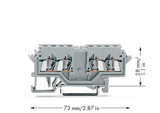 Durchgangsklemme 5 mm Zugfeder Belegung: L Grau WAGO 280-626 100 St.