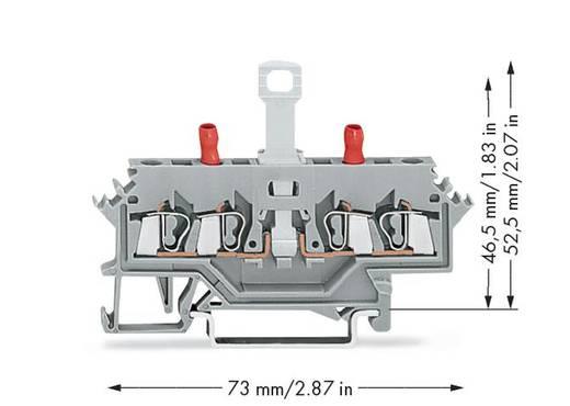 Trennklemme 5 mm Zugfeder Belegung: L Grau WAGO 280-627 50 St.