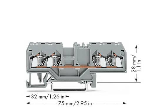 Durchgangsklemme 5 mm Zugfeder Belegung: L Grau WAGO 280-633 100 St.