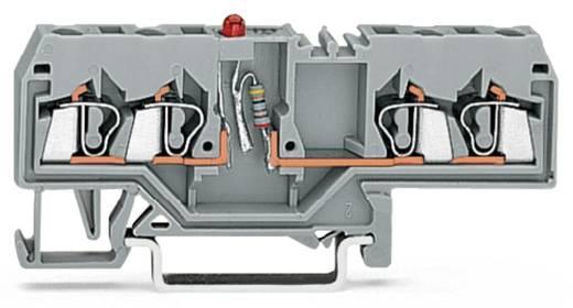 LED-Klemme 5 mm Zugfeder Belegung: L Grau WAGO 280-658/281-434 100 St.