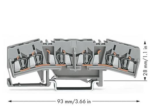 Durchgangsklemme 5 mm Zugfeder Belegung: L Grau WAGO 280-675 50 St.