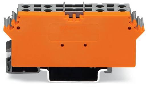Basisklemmenblock 5 mm Zugfeder Belegung: L Grau WAGO 280-762 1 St.