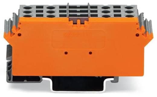 WAGO 280-763 Basisklemmenblock 5 mm Zugfeder Belegung: L Grau 1 St.
