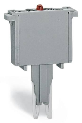 Glimmlampenbaustein WAGO Inhalt: 100 St.