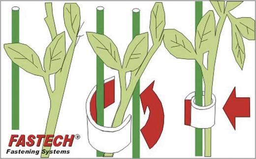 Klettband für Pflanzen und Garten Haft- und Flauschteil (L x B) 5000 mm x 10 mm Grün Fastech 701-322-Bag 1 Rolle(n)