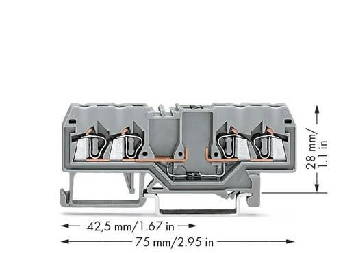 Diodenklemme 5 mm Zugfeder Belegung: L Grau WAGO 280-815/281-411 100 St.