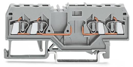 Basisklemme 5 mm Zugfeder Belegung: L Grau WAGO 280-816 100 St.