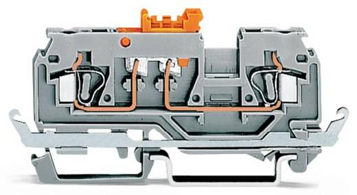 Trennklemme 5 mm Zugfeder Belegung: PE Grau WAGO 280-869 50 St.