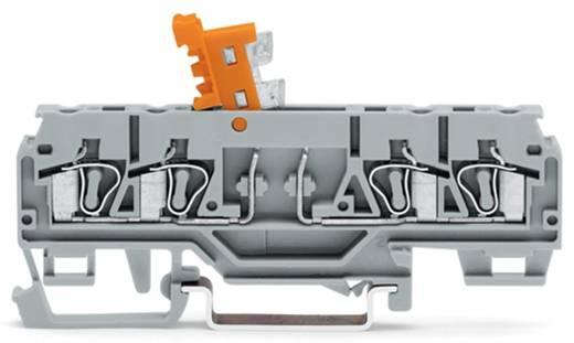 Trennklemme 5 mm Zugfeder Belegung: L Grau WAGO 280-874 50 St.