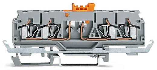 Trennklemme 5 mm Zugfeder Orange WAGO 280-884 50 St.