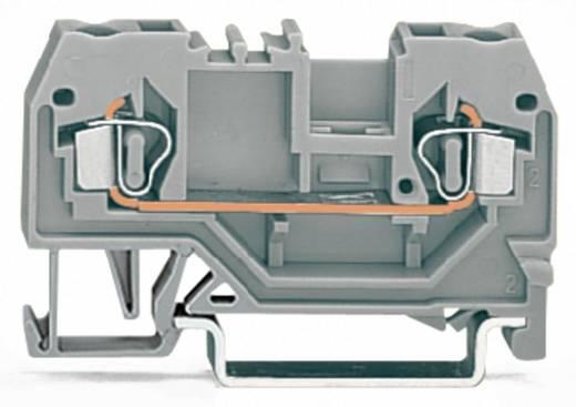 Durchgangsklemme 5 mm Zugfeder Orange WAGO 280-902 100 St.