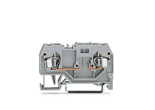 Basisklemme 5 mm Zugfeder Belegung: L Grau WAGO 280-916 100 St.