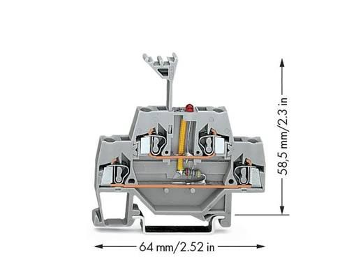Doppelstock-LED-Klemme 5 mm Zugfeder Belegung: L Grau WAGO 280-943/281-434 50 St.
