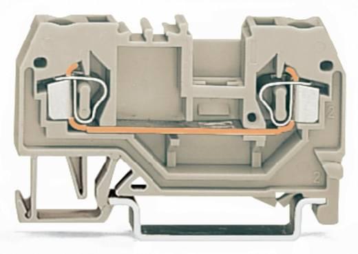 Durchgangsklemme 5 mm Zugfeder Belegung: L Grau WAGO 280-992 100 St.