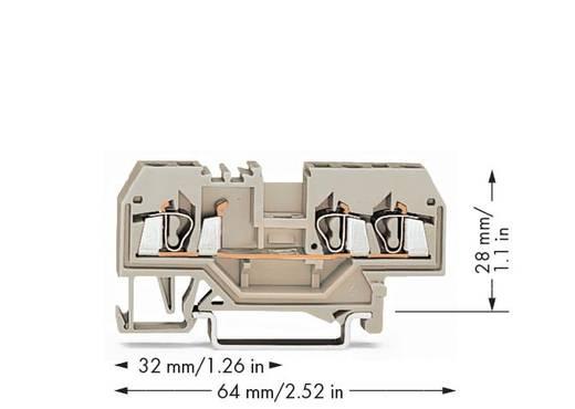 Durchgangsklemme 5 mm Zugfeder Belegung: L Grau WAGO 280-993 100 St.