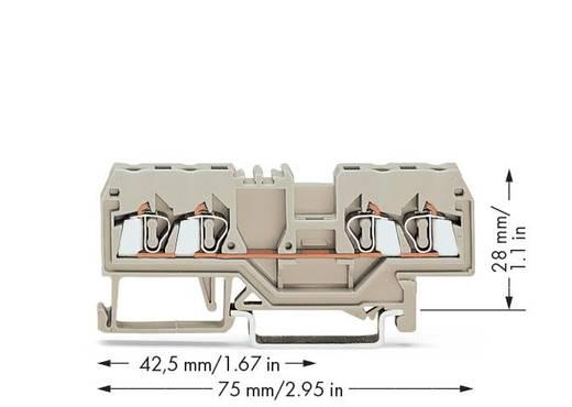 Durchgangsklemme 5 mm Zugfeder Belegung: L Grau WAGO 280-994 100 St.