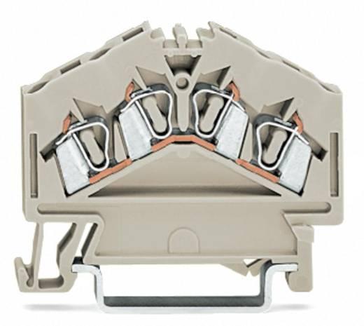 Durchgangsklemme 5 mm Zugfeder Belegung: L Grau WAGO 280-996 100 St.