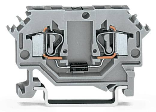 Diodenklemme 6 mm Zugfeder Belegung: L Grau WAGO 281-603/281-400 50 St.