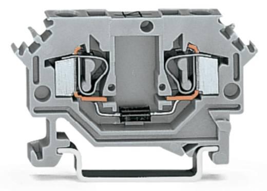 Diodenklemme 6 mm Zugfeder Belegung: L Grau WAGO 281-603/281-410 100 St.