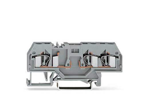 Basisklemme 6 mm Zugfeder Belegung: L Grau WAGO 281-610 50 St.