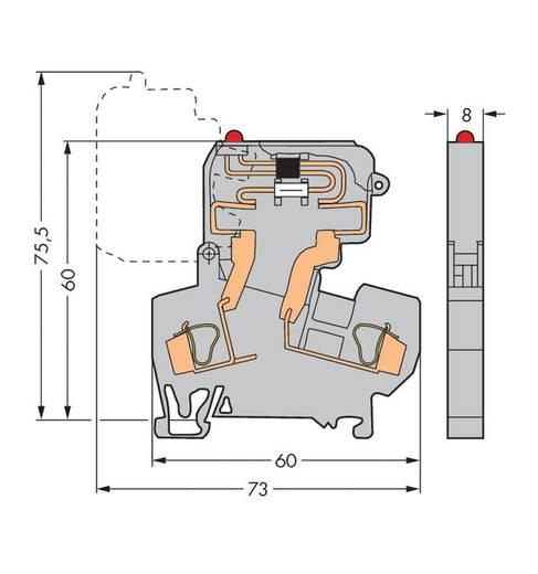 Sicherungsklemme 8 mm Zugfeder Belegung: L Grau WAGO 281-611/281-542 50 St.
