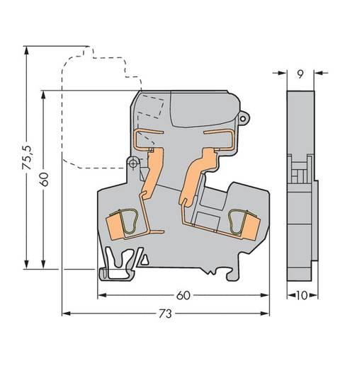 Sicherungsklemme 10 mm Zugfeder Belegung: L Grau WAGO 281-613 50 St.