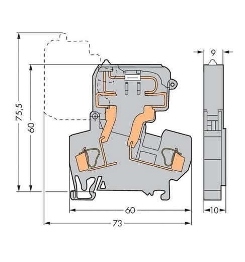 Sicherungsklemme 10 mm Zugfeder Belegung: L Grau WAGO 281-613/281-418 50 St.