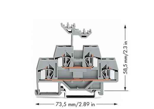 Doppelstock-Durchgangsklemme 6 mm Zugfeder Belegung: L Grau WAGO 281-619 50 St.