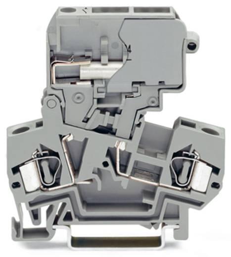 Trennklemme 8 mm Zugfeder Belegung: L Grau WAGO 281-624 50 St.