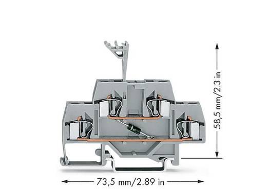 WAGO 281-633/281-410 Doppelstock-Diodenklemme 6 mm Zugfeder Belegung: L Grau 50 St.