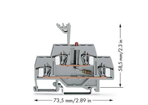 Doppelstock-LED-Klemme 6 mm Zugfeder Belegung: L Grau WAGO 281-634/281-413 50 St.