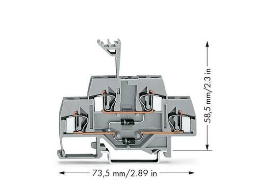 WAGO 281-635/281-492 Doppelstock-Diodenklemme 6 mm Zugfeder Belegung: L Grau 50 St.