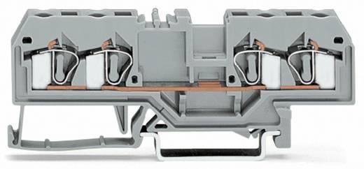 WAGO 281-664 Durchgangsklemme 6 mm Zugfeder Schwarz 50 St.