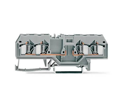 Basisklemme 6 mm Zugfeder Belegung: L Grau WAGO 281-656 50 St.