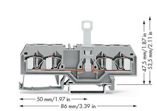 Trennklemme 6 mm Zugfeder Belegung: L Grau WAGO 281-659 50 St.