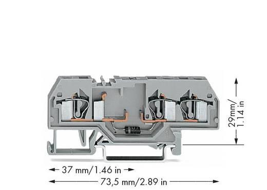 Diodenklemme 6 mm Zugfeder Belegung: L Grau WAGO 281-673/281-411 50 St.