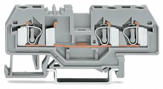 WAGO 281-678 Durchgangsklemme 6 mm Zugfeder Orange 50 St.